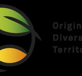 origine_logotype_500px